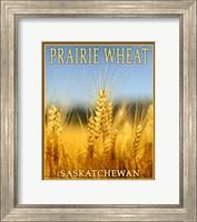 Framed Praire Wheat,