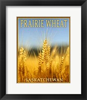 Framed Praire Wheat,