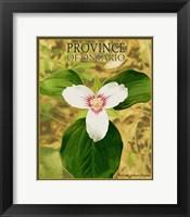 Framed Province Ontario