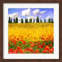 Framed Lombardy