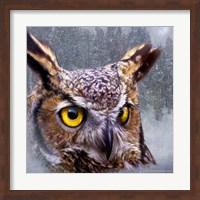 Framed Winter Owl