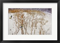 Framed Goldfinches Snow