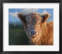 Framed Highland Calf