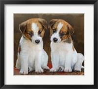 Framed Twin Puppies