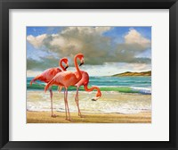 Framed Beach Scene Flamingos