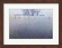 Framed Fence Line Elk