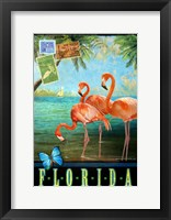 Framed Florida Flamingoes