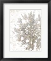 Framed Silver Blooms 2