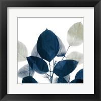 Framed Midnight Leaves 1