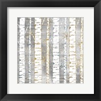 Framed In The Birches