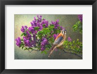 Framed Lilac Branch Kestrel