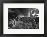 Framed Saguaros Lost Dutchman State Park Arizona Superstition Mtns 1