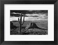 Framed Saguaros Lost Dutchman State Park Arizona Superstition Mtns 2
