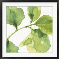 Framed Blue and Green Garden VII