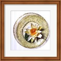 Framed Lotus Flower