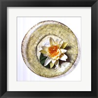 Framed Lotus Flower