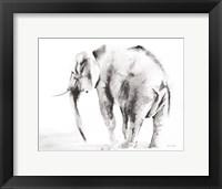 Framed Lone Elephant Gray Crop