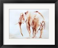 Framed Lone Elephant