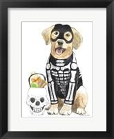 Framed Halloween Pets VII