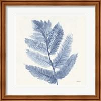 Framed Forest Ferns I Blue