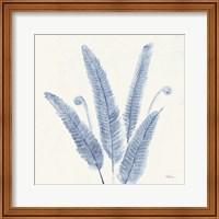 Framed Forest Ferns II v2 Blue