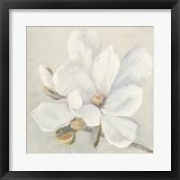 Framed Serene Magnolia