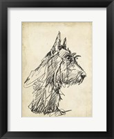 Breed Studies I Framed Print
