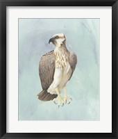 Framed Watercolor Beach Bird IV