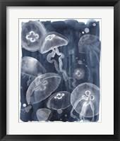Framed Moon Jellies I