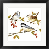 Framed Birds & Berries I
