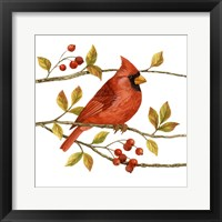 Framed Birds & Berries III