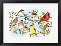 Framed Birds & Berries V
