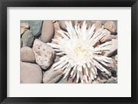 Framed Pebble Beach II