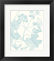 Framed Botanical Study in Spa II