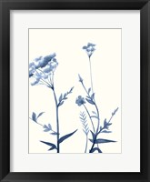 Framed Indigo Wildflowers I
