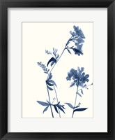 Framed Indigo Wildflowers II