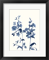 Framed Indigo Wildflowers III