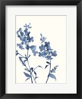 Framed Indigo Wildflowers IV