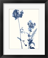 Framed Indigo Wildflowers V
