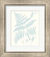 Framed Serene Ferns I