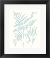 Framed Serene Ferns I