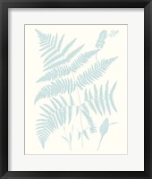 Serene Ferns I Framed Print