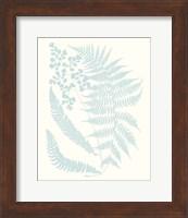 Framed Serene Ferns II