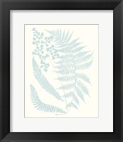 Framed Serene Ferns II