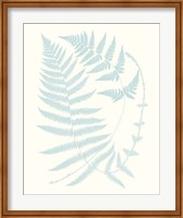 Framed Serene Ferns III