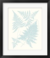 Framed Serene Ferns IV