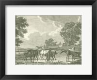 Equestrian Scenes I Framed Print