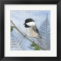 Framed Eastern Songbird II
