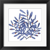 Framed Botanical Impressions II