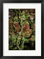 Framed Japanese Garden Tree 2